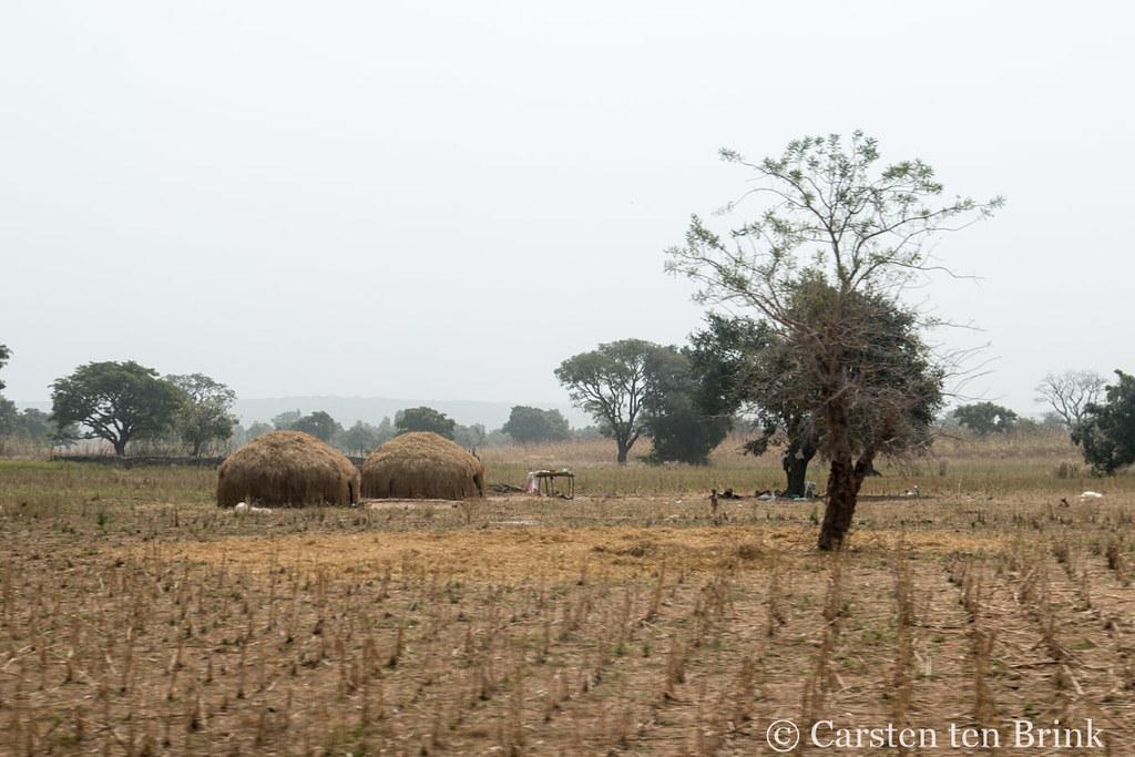 La gestion des conflits entre agriculteurs dans la commune urbaine de Dogondoutchi